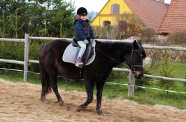 S Nelly si to užijí i menší děti, ale je lepší, pokud už mají nějaké základy jezdectví a umí koně hezky pobízet :) Nelly je přeci jen větší poník a tak se nožičky dětí více nadřou :)